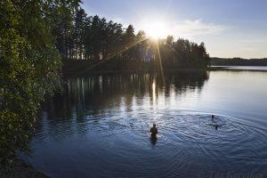 376 – Punkaharju (Saimaa Lake area)