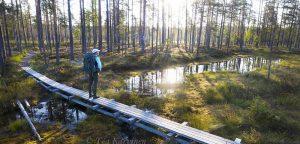 925-926– Lauhanvuori National Park, Finland