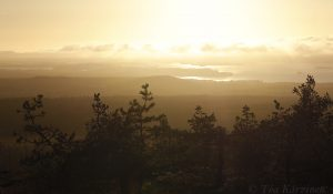 3185 – A view from Riisitunturi National Park over Kitkajärvi lake