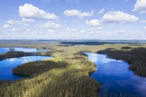843 – Lake Pitkä-Hoilua on right. A view to the north.