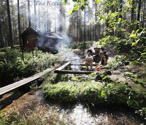 9294 – The wilderness cabin of Alavalkeinen