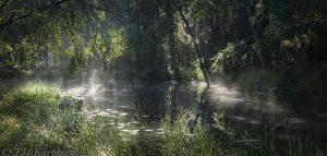 1047-1049 – Liesijoki river