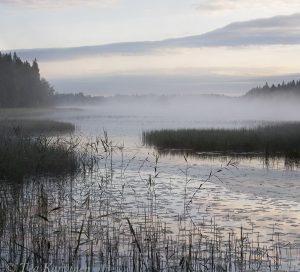 931-933 – Liesijärvi lake