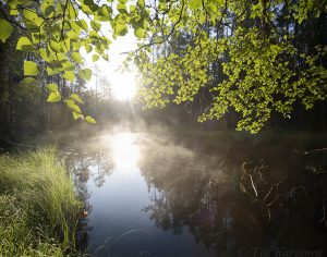 987-988 – Liesijoki river