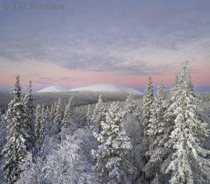 photo of the week 51 – Pallastunturi = Pallas fells in Pallas-Yllästunturi National Park