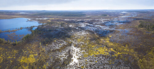 13-15 – Viiankiaapa - aapa mire in Sodankylä
