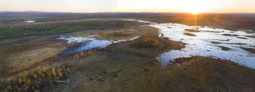 172-175 – Sokanaapa (an aapa mire) in Pelkosenniemi, Lapland at midnight in the beginning of June.