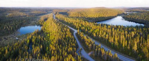 477-479 – Kaunisharju at a new national park of Finland: Sallatunturi