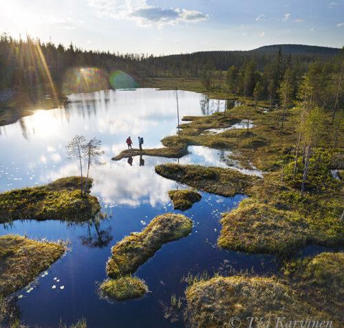 544-545 – A swamp area in a new national park of Finland: Sallatunturi