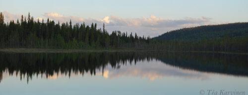 6193-6196 – Koutolampi @ Aatsinginhauta in a new Sallatunturi National Park