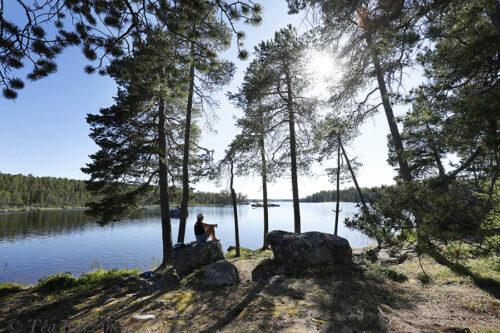 6538 – Hoikka-Petäjäsaari (island)