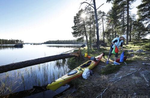 6550 – Hoikka-Petäjäsaari (island)