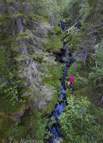 105-107 – Pahaoja gorge (Pahaojankuru)