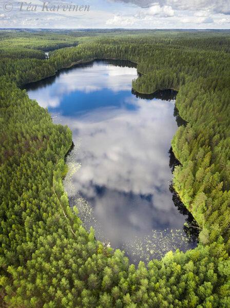444-446 – Alinen Niemisjärvi lake