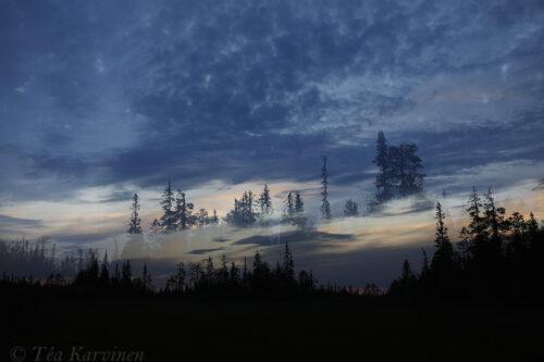 7090 – @ Sallatunturi (in Salla, Lapland)