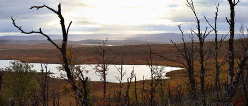 228-230  – Tsuomasjärvi lake (last night when starting @ Sevettijärvi, Inari)
