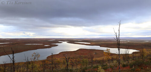 242-243  – Tsuomasjärvi lake (last night when starting @ Sevettijärvi, Inari)