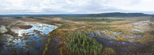 280-283 – Hyöteikönsuo swamp area next to the Näränkä Natural Forests