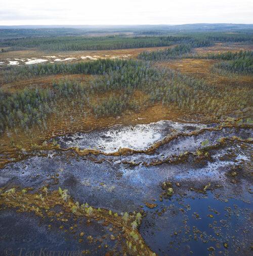 288-289 – Hyöteikönsuo swamp area next to the Näränkä Natural Forests