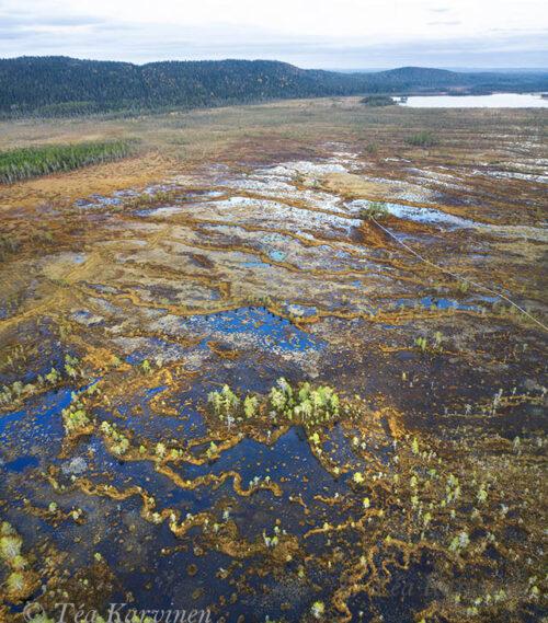 305-306 – Hyöteikönsuo swamp area next to the Näränkä Natural Forests