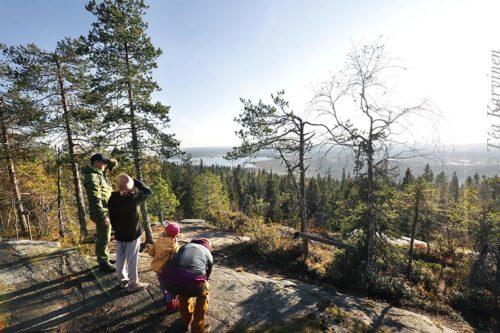 8732 – Yheksänsylenkallion näköalapaikka – views toward the protected swamp area