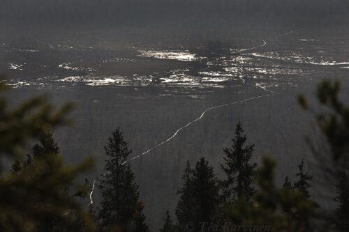 8742 – Hyöteikönsuo swamp area next to the Näränkä Natural Forests